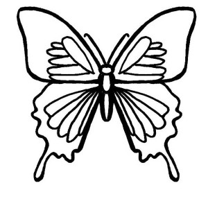 A Butterfly With Birdwing Marks Coloring Page