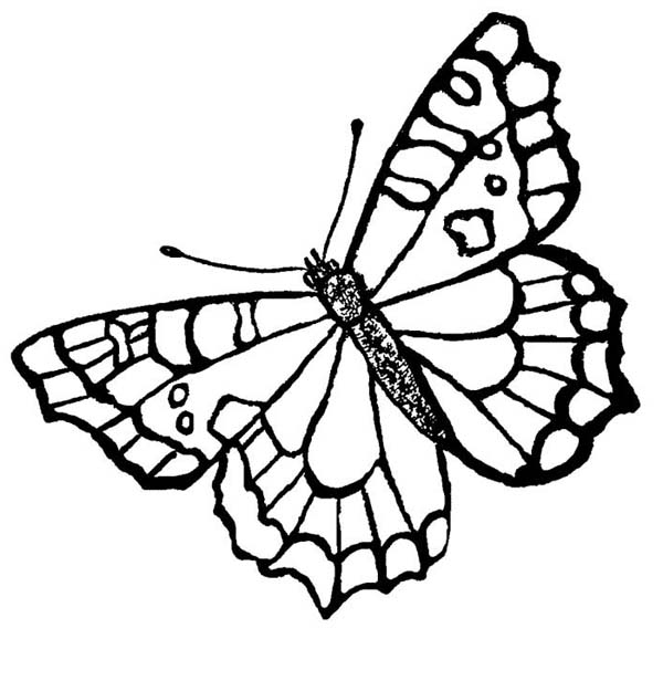 A Butterfly With Spotting Mark Wings Coloring Page ...