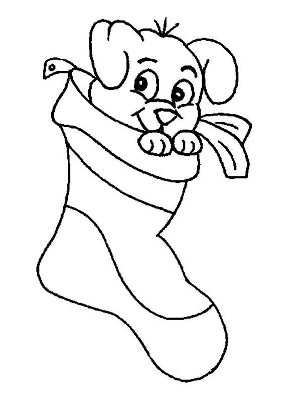 a cute little puppy on christmas stocking coloring page