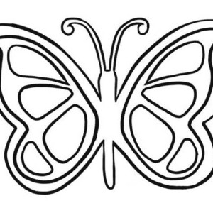 Artistic Butterfly Lineart Coloring Page