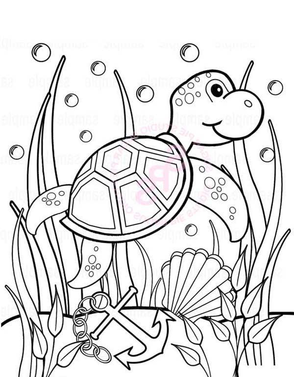 Baby Sea Turtle Play Between Seaweed Free Coloring Sheet ...