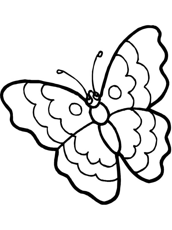 Cartoon Butterfly In Sad Eyes Coloring