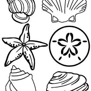Complete Sea Shells Family Free Coloring Page