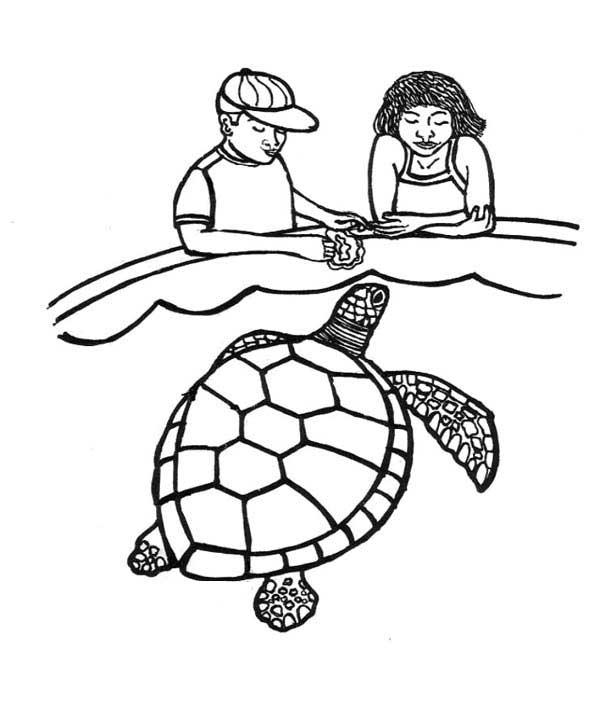 online turtle coloring pages - photo#5