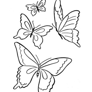 Four Butterflies Flying On The Park Coloring Page