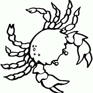 Free Realistic Sea Crab Sea Animals Coloring Page