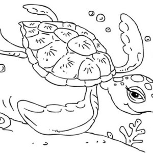 Free Sea Turtle Swimming Coloring Page