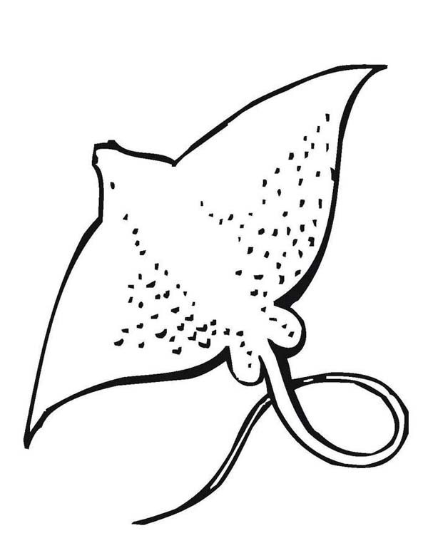 Sea Animal Coloring Pages Printable Free | Ocean coloring pages ... | 776x600