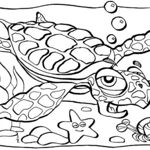 Old Sea Turtle Lifespan Coloring Page