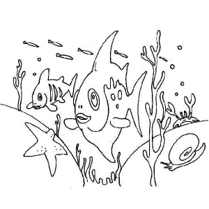 Sea Animals Near Seabed Coloring Sheet Coloring Page