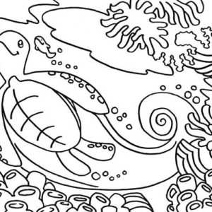 Sea Turtle Habitat Free Coloring Page