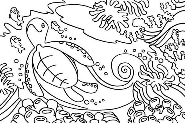 Sea Turtle Habitat Free Coloring Page - Download & Print Online ...