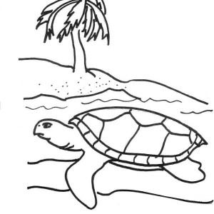 Sea Turtle Hatching Season Coloring Page