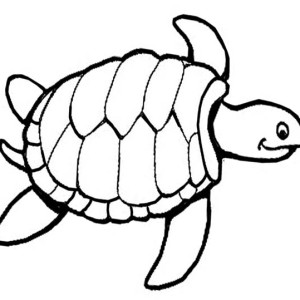Sea Turtle Knitting Pattern Free Coloring Page