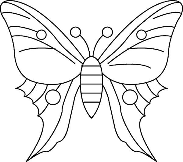 simple butterfly drawing coloring page