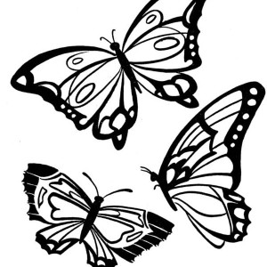 Three Butterflies With Beautiful Complexion Coloring Page