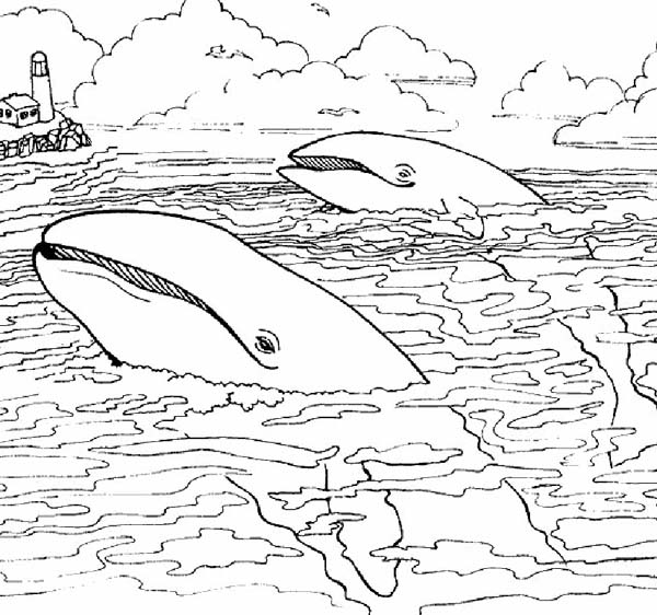 Two Giant Whale Near Lighthouse Coloring Page Download