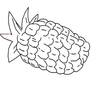 A Corn Shaped Pattern Pineapple Coloring Page