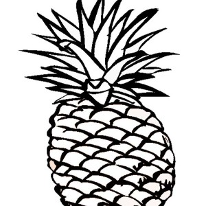 A Delicious Hawaiian Smooth Cayenne Pineapple Coloring Page