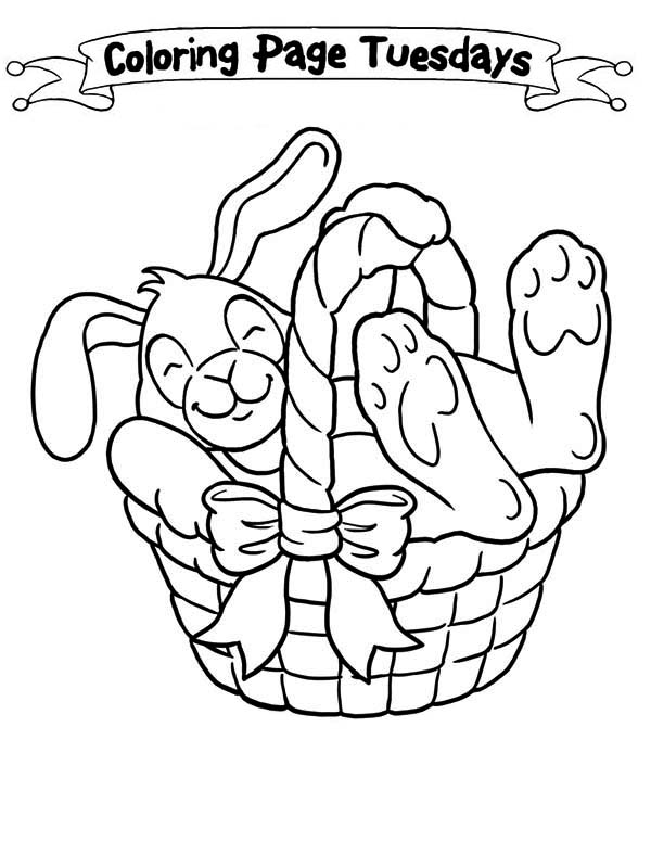 A Sleepy Bunny Inside The Easter Basket Coloring Page Download