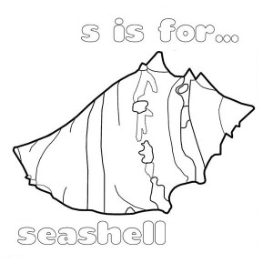 A Type Of Fighting Conch Seashell Coloring Page