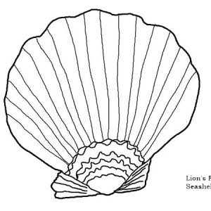 Beautiful Lions Paw Seashell Coloring Page
