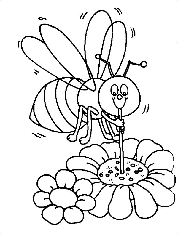 Bumblebee Sucking Honey Using Straw Coloring Page Download Print