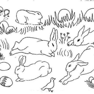 Bunch Of Rabbit Taking Nap On The Open Field Coloring Page