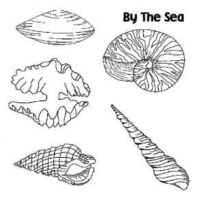 Five Different Seashels Coloring Page