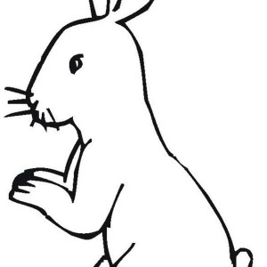 Little Bunny Standing On His Feet Coloring Page