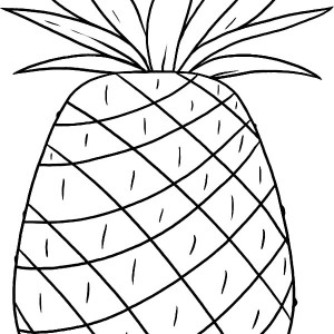 Smooth Cayenne Pineapple  From Hawaii Coloring Page