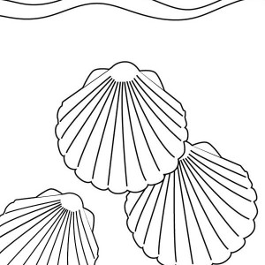 Three Beautiful Kittens Paw Seashell Coloring Page