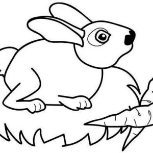Two Delicious Carrots For Mr Bunny Coloring Page