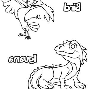 Bird And Iguana Coloring Page