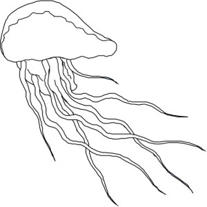 Coloring Page Of Jellyfish