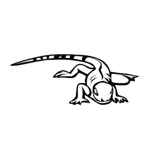 Iguana Crawling On The Floor Coloring Page