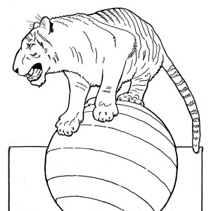 A Circus Tiger Playing With A Ball Coloring Page