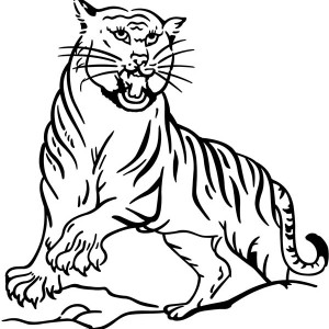 A Classic Illustration Of Asian Tiger Coloring Page