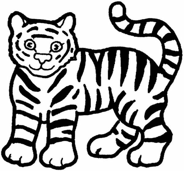 Coloring Page: Tiger Family | San Diego Zoo Kids | 558x600
