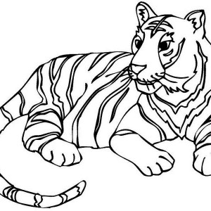 A Fulfiled Adult Tiger After Its Meal Coloring Page