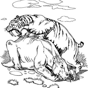 A Smilodon Tiger Cathing Its Prey Coloring Page