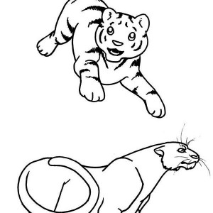 A Young Tiger Cub And The Adult Coloring Page