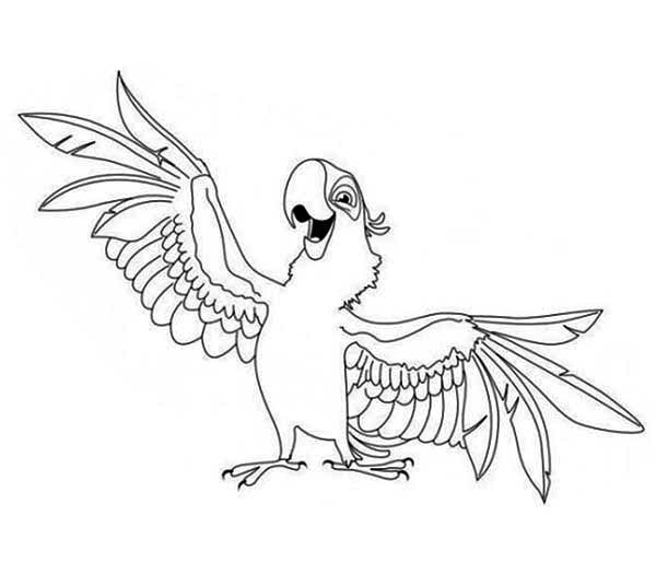 Aladeen Parrot Coloring Page Download Amp Print Online