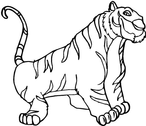 coloring pages of white tigers - photo#38