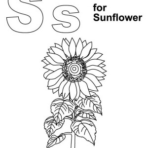 Awesome Sunflower Coloring Page