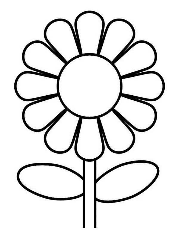 Printable sunflower coloring page. Free PDF download at http ... | 800x600