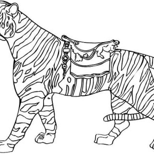Lets Ride The Tiger Coloring Page