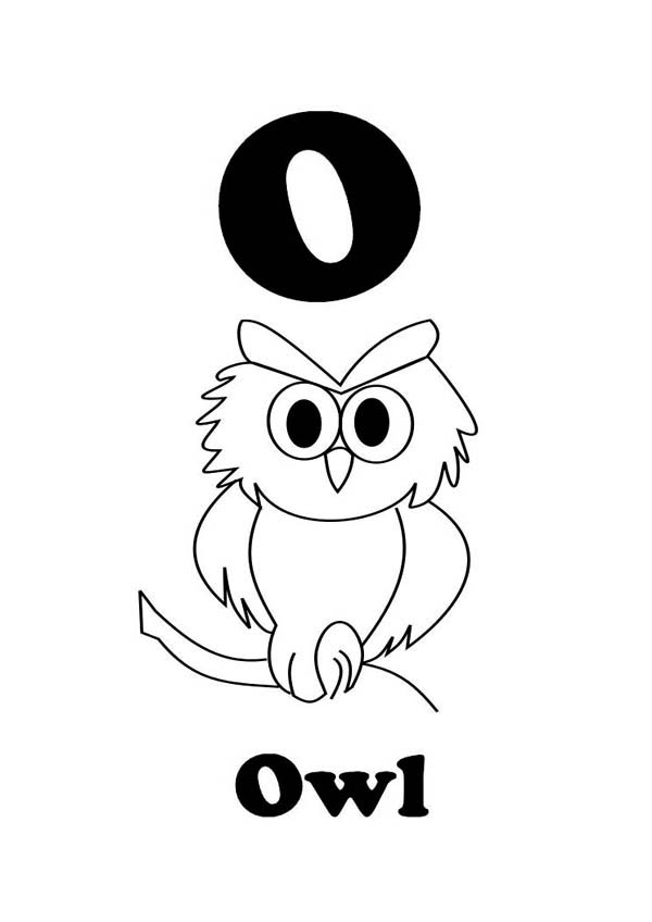 Letter O For An Owl Coloring And