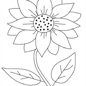 Seeding Sunflower Coloring Page