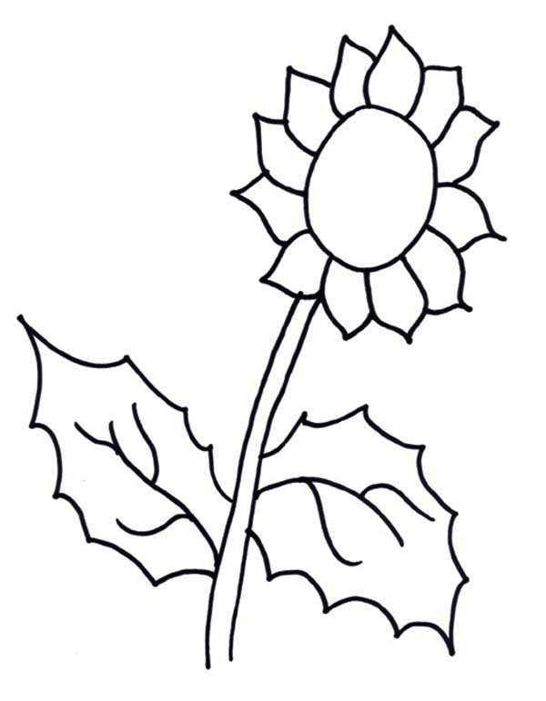 sunflower coloring page download amp print online coloring